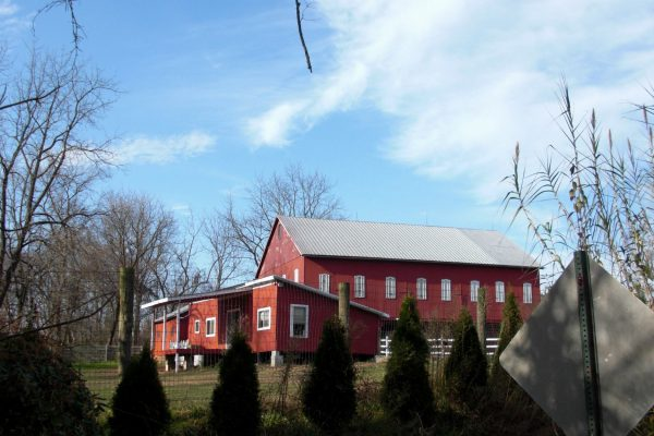 Obscenic Arts Studio and Barn outside grounds